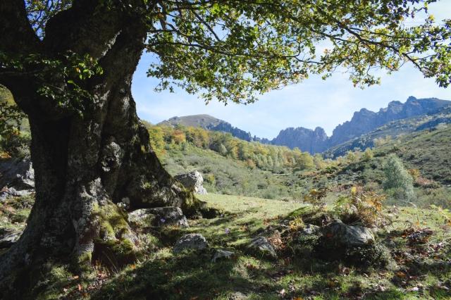 Asturias-6752