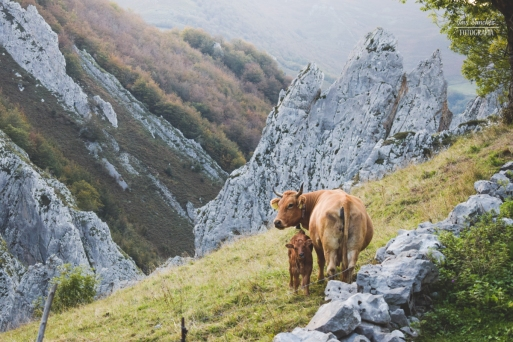 La Asturias profunda