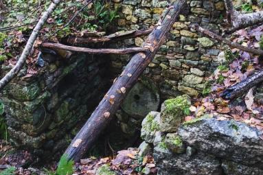 Ruinas de un viejo molino