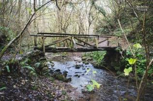 Puente sobre el arrollo