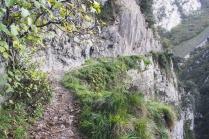 El sendero