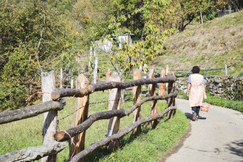 Vuelta a la aldea